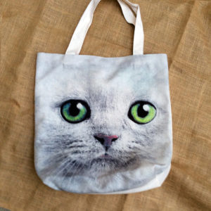 canvasmelcat